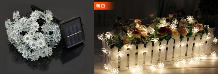 цветы на солнечной батарее