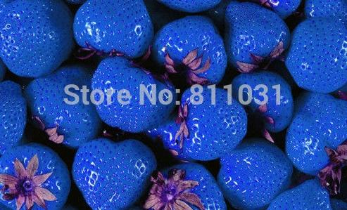 синяя клубника